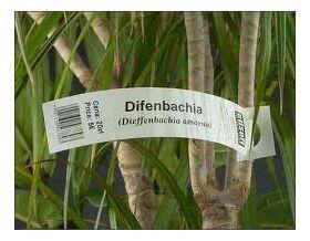 "Бирки ""петелька"" на растения 25 х 216 мм, материал PET : Gera-Trade"